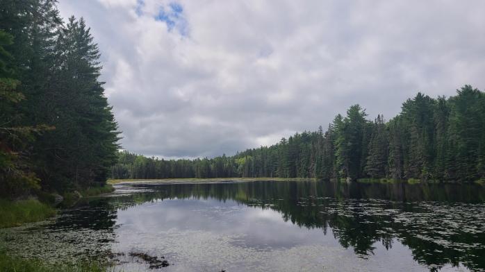 Beaver Pond Trail, Algonquin Provincial Park, Ontario, Canada