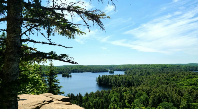 Track and Tower Trail, Algonquin Park – Photo Friday #15